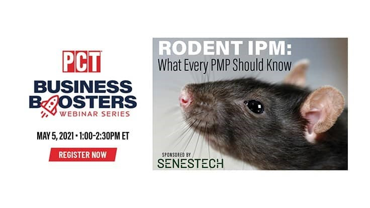 Upcoming Webinar: What Every PMP Should Know About Rodent IPM