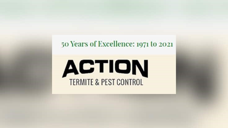 Action Termite & Pest (NJ) Celebrating 50 Years in Business