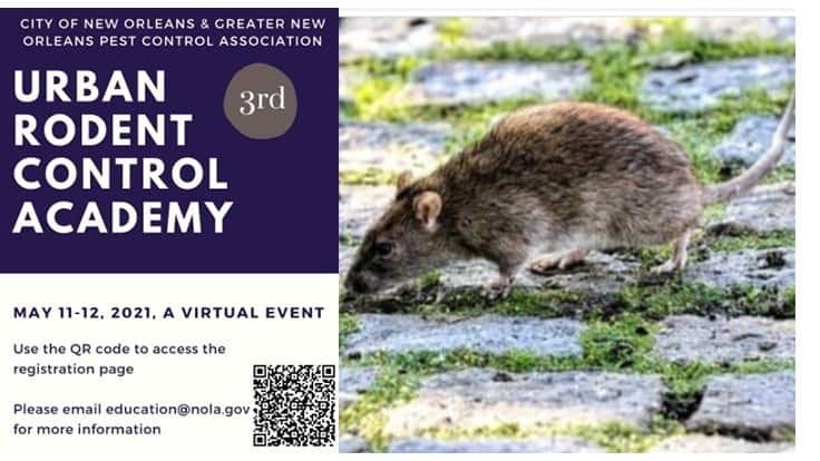 Urban Rodent Control Academy to be Held Virtually May 11-12
