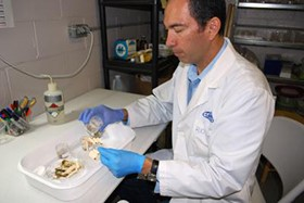 Profile of NMSU's Romero Praises His Unique Research