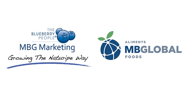 Blueberry cooperative MBG Marketing establishes MB Global Foods
