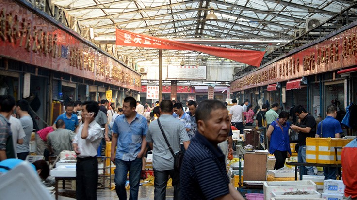 Study Looks at Food Buying Habits of Chinese Consumers