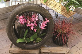 Fine-tune your garden center