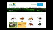 Florida Environmental Launches New Pest ID Page