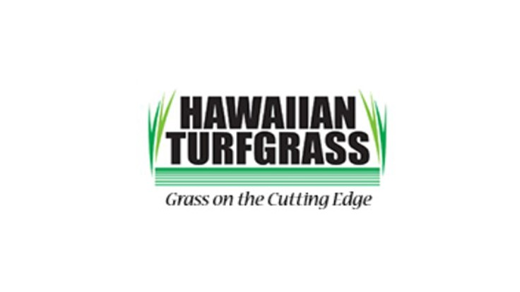 Hawaiian Turfgrass ready to sell and harvest Zeon Zoysia
