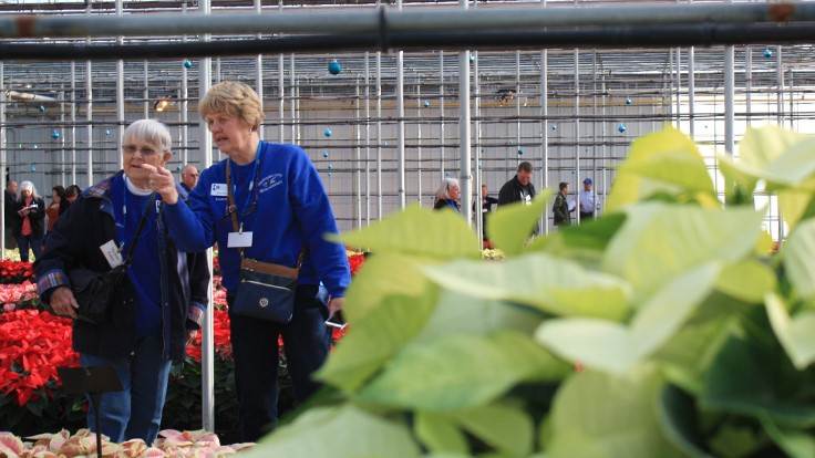 N.G. Heimos Greenhouses and Millstadt Young Plants announces Poinsettia Trials results