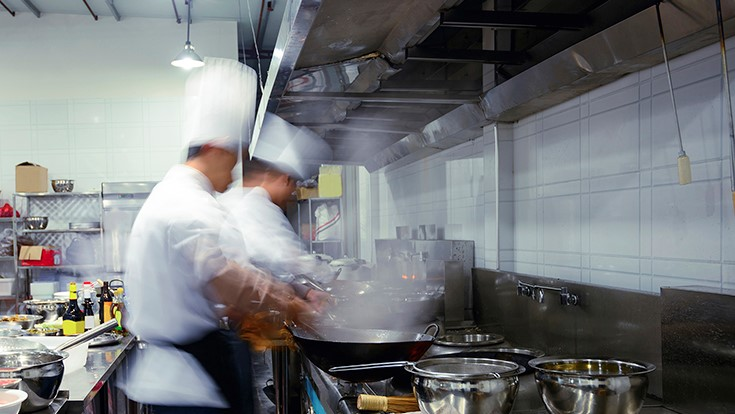 Conquering Pests in Commercial Kitchens