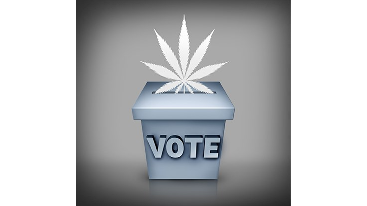Voters to Decide on Marijuana Issues in California Cities