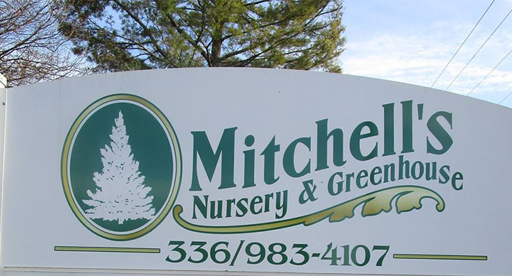 Mitchell's Nursery and Greenhouse releases poinsettia open house results