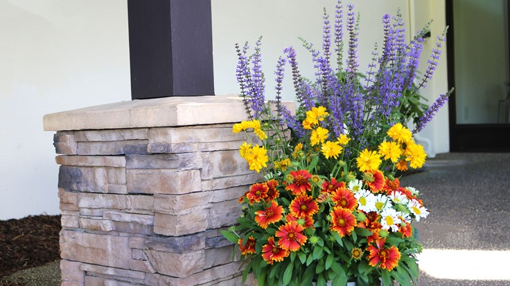 How to design stellar perennial combinations