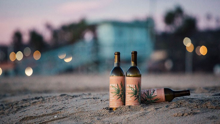 Cannabis-Infused Wine Variety Provides Taste of Sauvignon Blanc (Without the Effects of Alcohol)