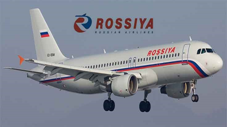 Bees Swarm Russian Passenger Flight