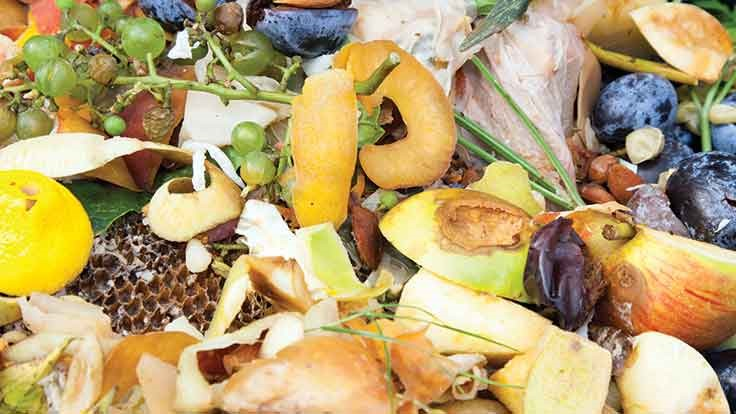 New York Department of Sanitation announces first food waste fair