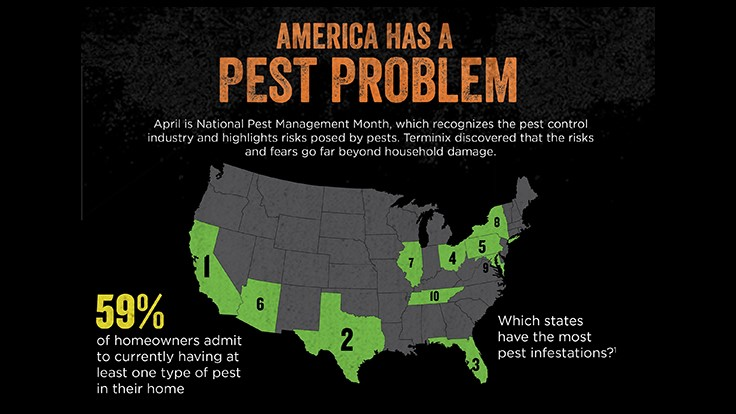 Terminix Survey: Household Pests Scarier Than Zombies