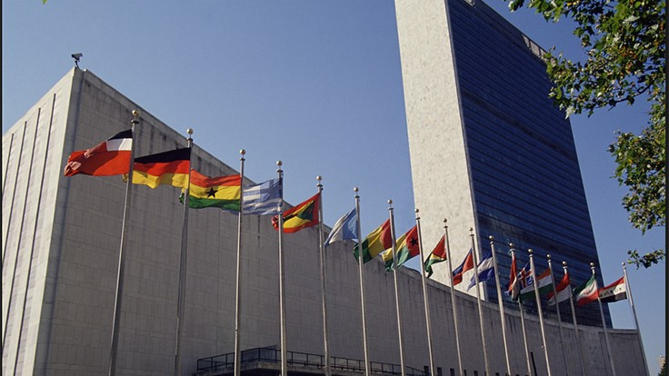 Bed Bugs Discovered in UN Building