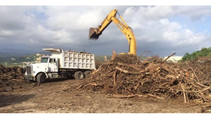 US Army Corps of Engineers recycles wood and metal during Puerto Rico cleanup