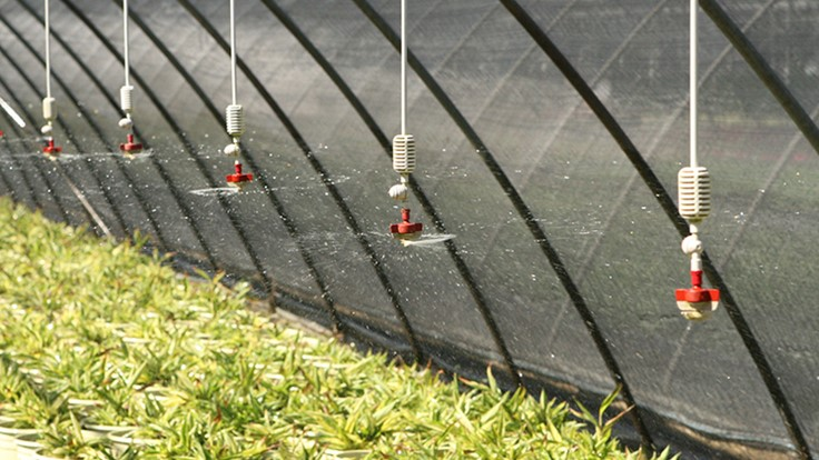 University Of Florida Calls For Grower Responses To Water