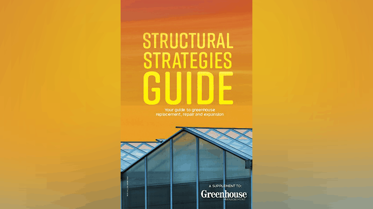 Structural Strategies Guide