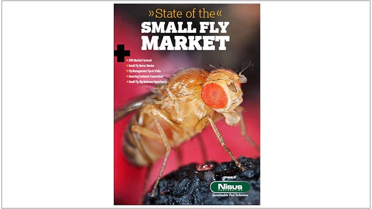 State of the Small Fly Market Report, Sponsored by Nisus