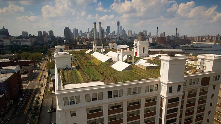 Economics of urban ag