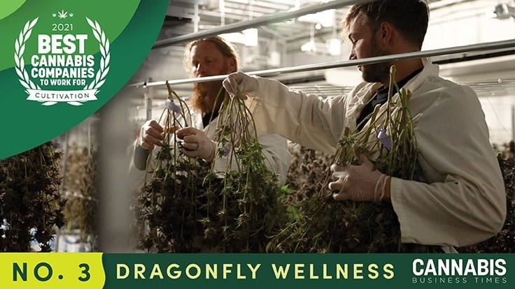 Utah's Dragonfly Wellness Provides More than a Job For Employees